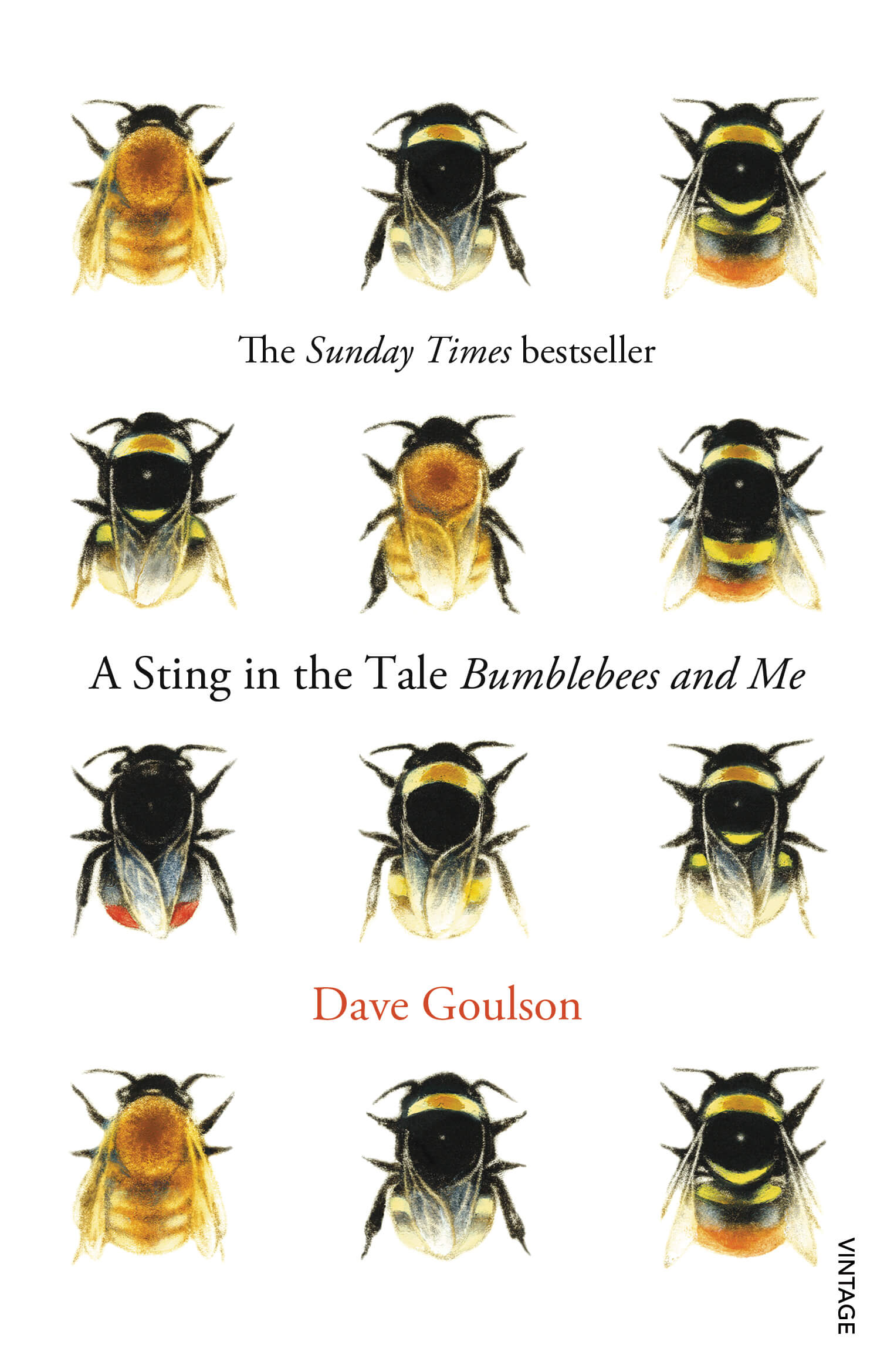 Book cover, A Sting in the Tale